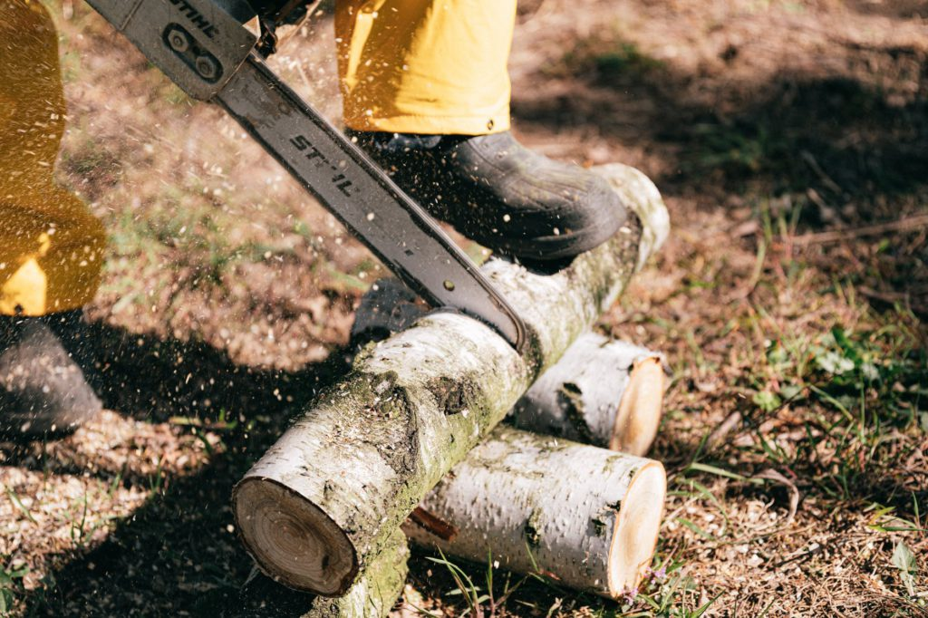 Problemas ambientais, desmatamento